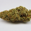 amnisia-haze-strain-review-01
