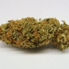 amnisia-haze-strain-review-03