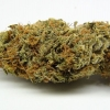 amnisia-haze-strain-review-04