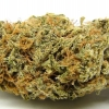 amnisia-haze-strain-review-07