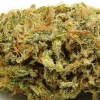 amnisia-haze-strain-review-09