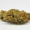 amnisia-haze-strain-review-32