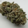 blackberry-kush-strain-review-03