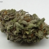 blackberry-kush-strain-review-04
