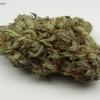 blackberry-kush-strain-review-06