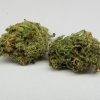 blue-dream-strain-review-03
