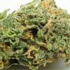 blue-dream-strain-review-06