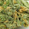 blue-dream-strain-review-08