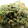 blue-dream-strain-review-15