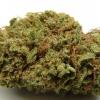 goo-strain-review-11