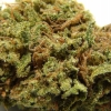 goo-strain-review-14