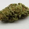 lemon-kush-strain-review-03