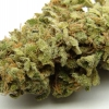 lemon-kush-strain-review-04