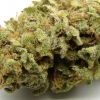 lemon-kush-strain-review-06