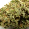 lemon-kush-strain-review-08
