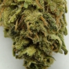 maui-wowie-strain-review-20