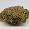 purple-kush-strain-review-09