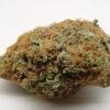 purple-kush-strain-review-21