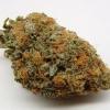 purple-kush-strain-review-23