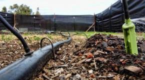 I.R. Ninja's Outdoor Marijuana Garden 2012: Plumbing, Fencing, and Starts