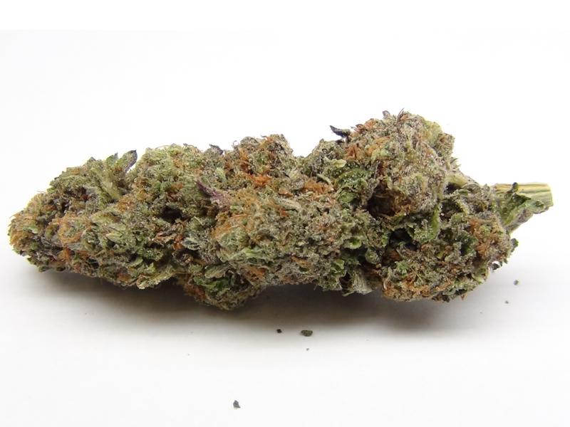 Marijuana Growers Hq Grandaddy Purple Gdp Marijuana