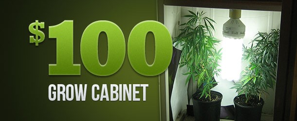 The $100 Grow Cabinet