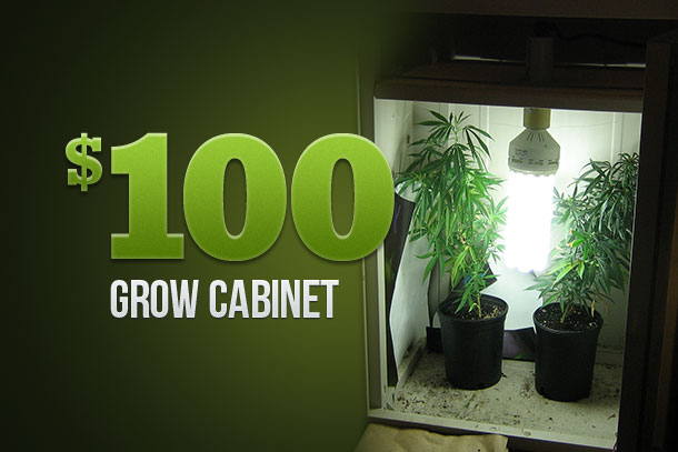Marijuana Growers HQ – The $100 Grow Cabinet