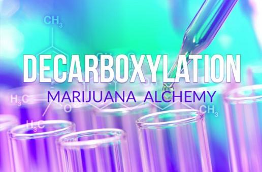 Decarboxylation: Marijuana Alchemy