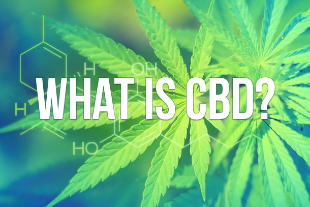 Image result for what is cbd